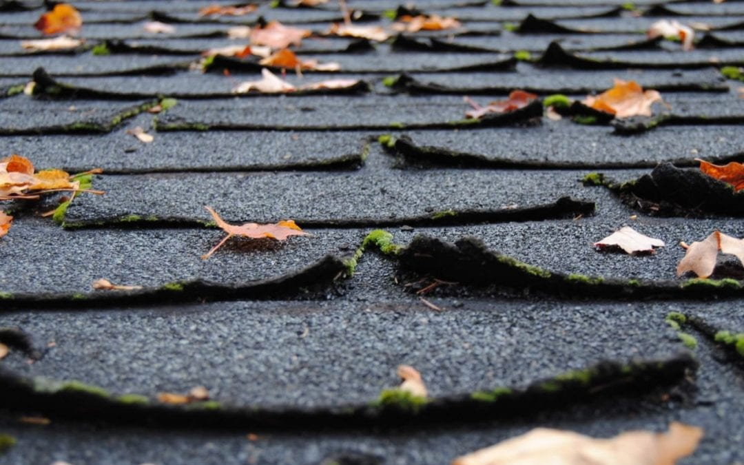 Warped or curling shingles can indicate you need a roof replacement
