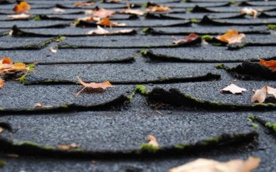 Signs that it's Time for a Roof Replacement